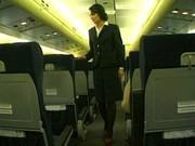 Трахнул стюардессу в обе дырки в самолете